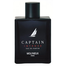 Perfume Captain Intense Masculino EDP 100ml TESTER